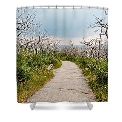 Shower Curtain featuring the photograph Rebirth by Jay Stockhaus