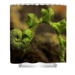 Shower Curtain featuring the photograph Rebirth by Mike Eingle