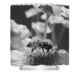 Recharge Black And White Shower Curtain
