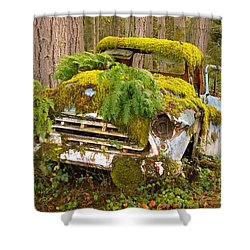 Reclamation Shower Curtain
