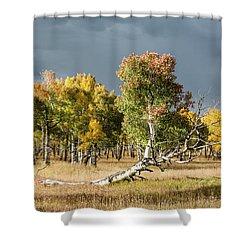 Reclining Aspen Shower Curtain