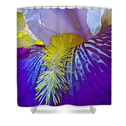 Recollection Spring 3 Shower Curtain by Jean Bernard Roussilhe