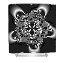 Recomizing Shower Curtain