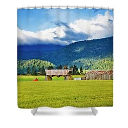 Shower Curtain featuring the photograph Recycled by Albert Seger