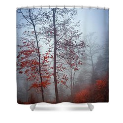 Shower Curtain featuring the photograph Red And Blue by Elena Elisseeva