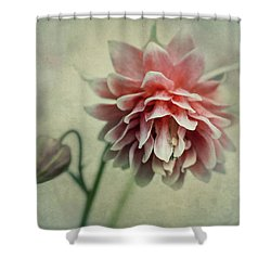Red And Pink Columbine Shower Curtain