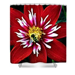 Red And White Flower With Bee Shower Curtain