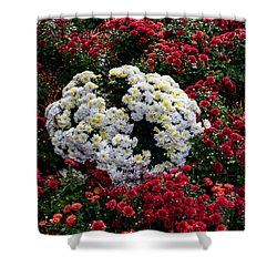 Shower Curtain featuring the photograph Red And White by Jay Stockhaus