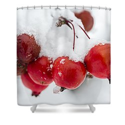 Shower Curtain featuring the photograph Red And White by Sebastian Musial