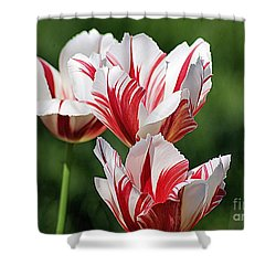 Shower Curtain featuring the photograph Red And White Stripes by John S