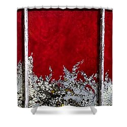 Red And White Widow # 2 Shower Curtain