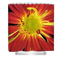Red And Yellow Flower Shower Curtain by Barbara Yearty