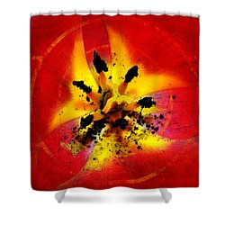 Red And Yellow Flower Shower Curtain by Judi Saunders