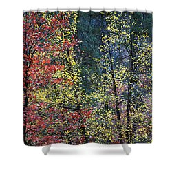 Red And Yellow Leaves Abstract Vertical Number 2 Shower Curtain by Heather Kirk