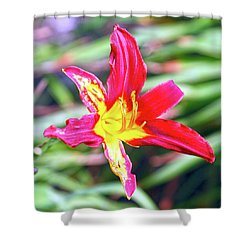 Red And Yellow Orchid Shower Curtain