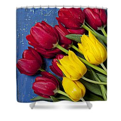 Red And Yellow Tulips Shower Curtain by Garry Gay