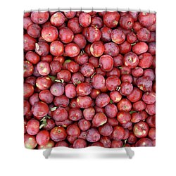Red Apples Background Shower Curtain by GoodMood Art