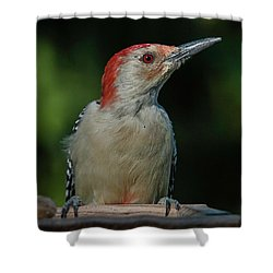 Red At Sunrise Shower Curtain
