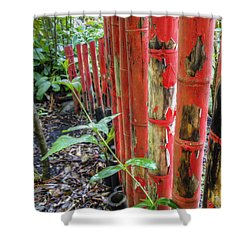 Red Bamboo Shower Curtain by Dolly Sanchez
