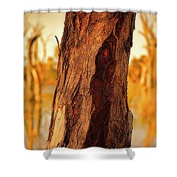 Shower Curtain featuring the photograph Red Bark by Douglas Barnard