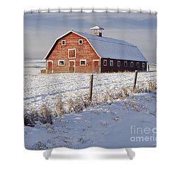 Red Barn In Winter Coat Shower Curtain