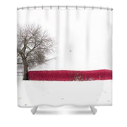 Shower Curtain featuring the photograph Red Barn In Winter by Tamyra Ayles
