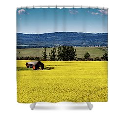 Red Barns In A Sea Of Canola Shower Curtain