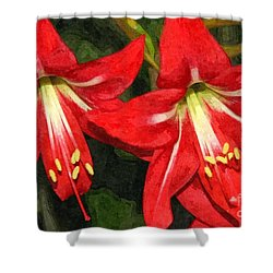 Amaryllis Lily Shower Curtain