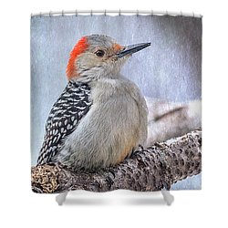 Red-bellied Woodpecker Shower Curtain by Patti Deters