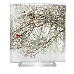 Red Bird Convention Shower Curtain