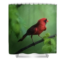 Red Bird On A Hot Day Shower Curtain by Lois Bryan