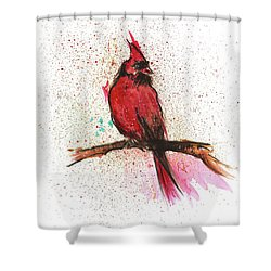 Red Bird Shower Curtain by Remy Francis