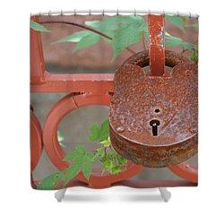 Shower Curtain featuring the photograph Red Bridge Red Lock by Carolina Liechtenstein
