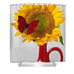 Red Butterfly On Sunflower On Red Pitcher Shower Curtain by Garry Gay
