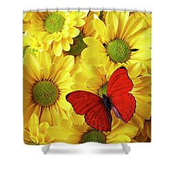 Red Butterfly On Yellow Mums Shower Curtain by Garry Gay