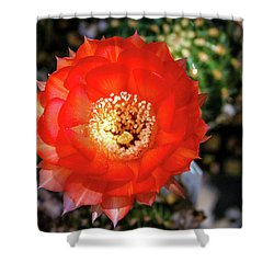 Red Cactus Bloom Shower Curtain