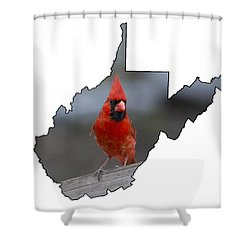 Red Cardinal Looking For Food Shower Curtain