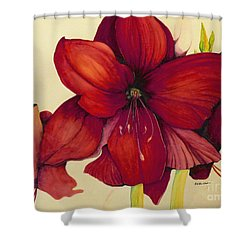 Shower Curtain featuring the painting Red Christmas Amaryllis by Rachel Lowry