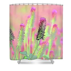 Shower Curtain featuring the photograph Red Clover Detail by Jerry Sodorff