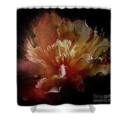 Red Composition Shower Curtain by Barbara Dudzinska