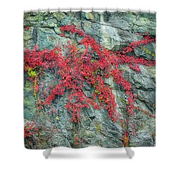 Red Creeper Shower Curtain