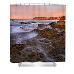 Red Dawning Shower Curtain by Mike  Dawson