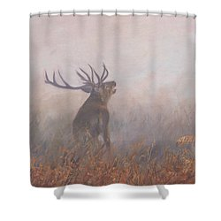 Shower Curtain featuring the painting Red Deer Stag Early Morning by David Stribbling