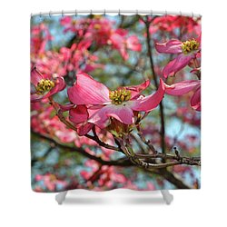 Red Dogwood Flowers Shower Curtain by Eva Kaufman