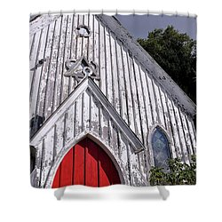 Red Door Shower Curtain by Gina Savage