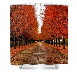 Red Drive Shower Curtain by Juli Ellen