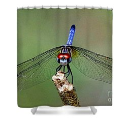 Red Eyed Dragonfly Shower Curtain