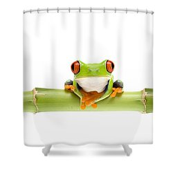 Red-eyed Treefrogs Shower Curtain by Mark Bowler and Photo Researchers