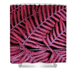 Red Fern Shower Curtain