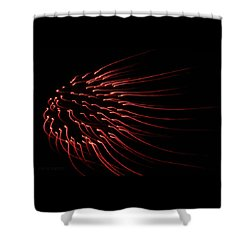 Shower Curtain featuring the photograph Red Firework  by Chris Berry